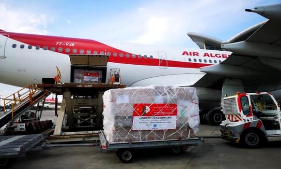 Photo of الجزائر تستلم مساعدات طبية من الصين لمواجهة وباء كورونا