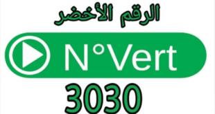 كوفيد-19: توسيع استعمال الرقم الخضر 3030 إلى 48 ولاية