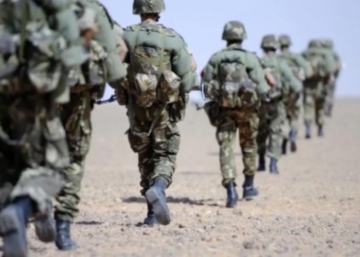 Photo of En mois de mars : un terroriste et trois éléments de soutien éliminés et des munitions saisies