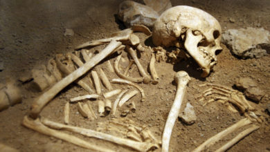 Photo of الشلف: اكتشاف بقايا هيكلين عظميين بشريين بتاوقريت