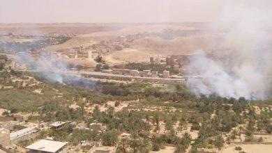 Photo of غرداية: حريق يلتهم نحو 2 هكتار من الأحراش والقصب بمدينة العطف