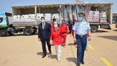Photo of الجزائر ترسل أكثر من 150 طن من المواد الغذائية إلى النيجر