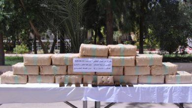 Photo of وزارة الدفاع: ضبط أزيد من خمسة قناطير من الكيف المعالج ببشار
