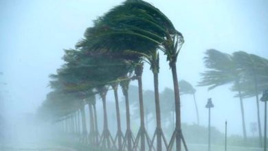 Photo of رياح قوية مع عواصف رملية في 7 ولايات