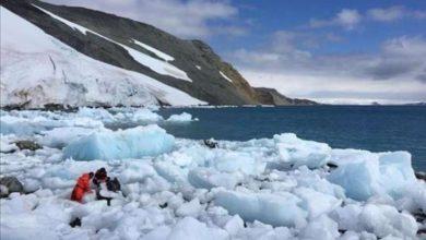 Photo of دراسة: حرارة القطب الجنوبي ترتفع أسرع من بقية العالم