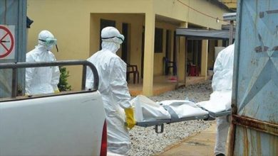 Photo of حصيلة: 494 إصابة جديدة بفيروس كورونا، 276 حالة شفاء و 7 وفيات في الجزائر خلال الـ 24 ساعة الأخيرة