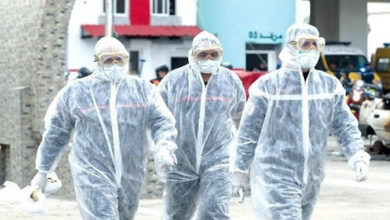 Photo of حصيلة: 385 إصابة جديدة بفيروس كورونا، 302 حالة شفاء و8 وفيات في الجزائر خلال الـ 24 ساعة