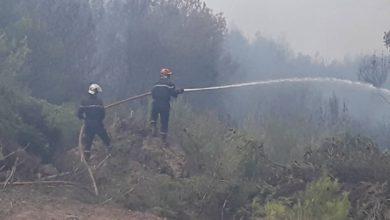 Photo of بومرداس: تسجيل أكثر من 550 بؤرة حريق خلال خلال شهري جوان وجويلية