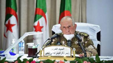 Photo of Chenegriha: le référendum sur la Constitution une étape importante dans l'édification de l'Algérie nouvelle