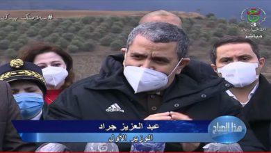 Photo of الوزير الأول : سيتم تعويض المتضررين من حرائق الغابات قبل 15 ديسمبر القادم