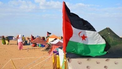 Photo of الصحراء الغربية:إعلاميون وأكاديميون يناقضون الدعاية الإعلامية التي يمارسها الاحتلال المغربي لتغليط الرأي العام الدولي
