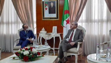 Photo of بن زيان يبحث مع السفيرين الإيطالي والتنزاني سبل تعزيز التعاون في مجال التعليم العالي