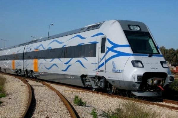 Photo of الشركة الوطنية للنقل بالسكك الحديدية تضع كلاب مدربة لمواجهة ظاهرة رمي القطارات بالحجارة