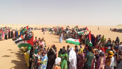 Photo of عريضة دولية تطالب بالإسراع في تمكين الشعب الصحراوي من ممارسة حقه في تقرير المصير