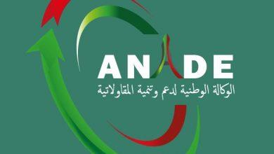 "Photo of وكالة ""أناد"" تعفي المقيمين بالخارج من شرط التنقل لأرض الوطن لإنشاء مؤسساتهم المصغرة"