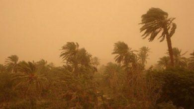 Photo of Des vents forts souffleront mercredi et jeudi sur plusieurs wilayas du sud