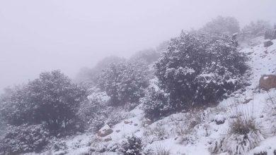 Photo of La neige recouvre les hauteurs de Batna, entrave la circulation sur certains axes routiers