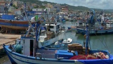 Photo of Thon rouge: la campagne de pêche 2021 lancée le 26 mai prochain