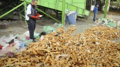 Photo of Ministry of Commerce: Algerians wasted 2.1 million breads in just 12 days