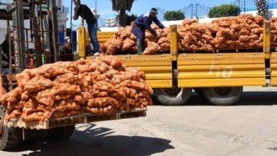 Photo of Déstockage de quantités supplémentaires de pomme de terre à travers 11 wilayas