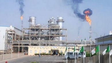 Photo of Price of Algerian crude oil rose by $3 in March