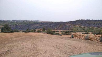 Photo of إتلاف 88 هكتار جراء حريقين بولايتي غليزان وسعيدة
