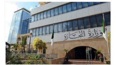 Photo of وزارة التجارة: نسبة التقيد بمداومة عيد الأضحى بلغت 100 بالمائة على المستوى الوطني