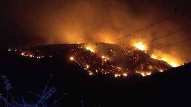 Photo of البليدة: إخماد 70 بالمائة من حريق نشب بمرتفعات الحظيرة الوطنية للشريعة