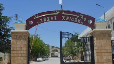 Photo of خنشلة: ربط 216 مسكنا ببلدية ششار بشبكة الكهرباء